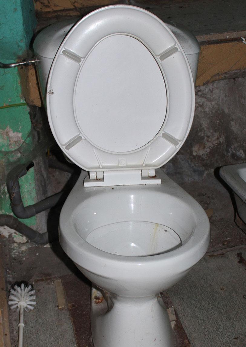 Une arrivée plus ou moins chaotique - Toilettes - Une Ferme à la Bassette